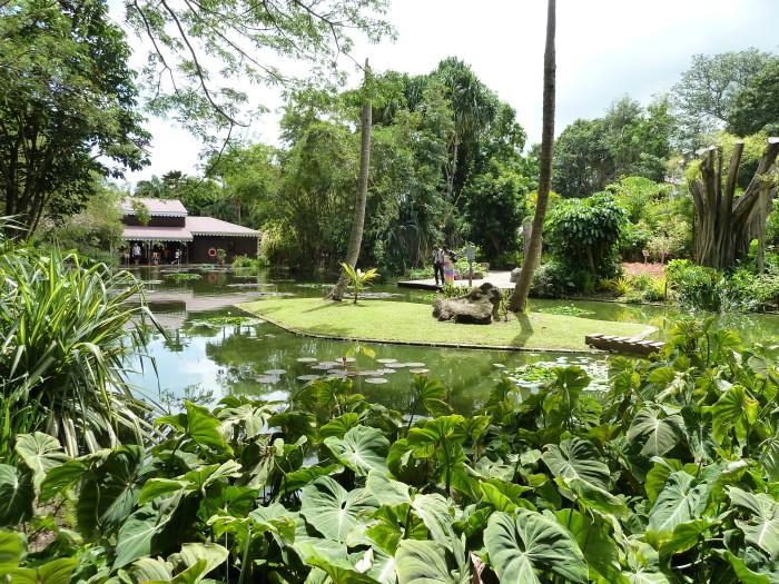 Jardin botanique de Dehaies